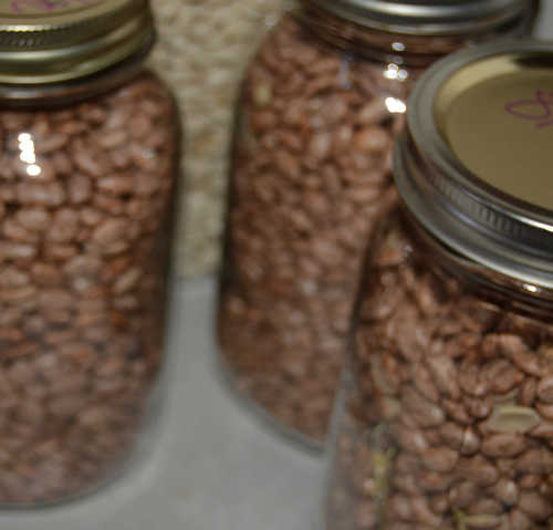 Dry Canning with a Foodsaver