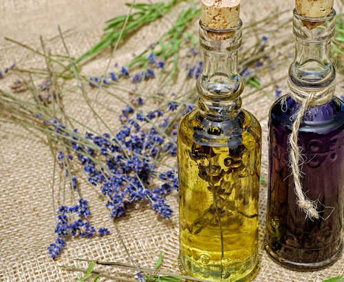 Essential Oils and First Aid