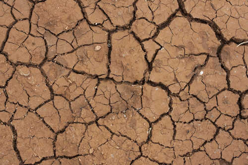dried out land