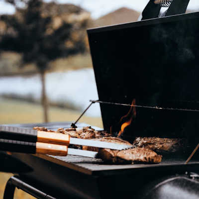 Choosing a Barbecue Grill