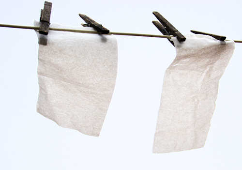 toilet paper drying